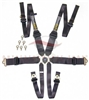 Racetech RTMALWSS Magnum Lightweight Single Seater Safety Harness 6 Point 3 inch / 3 inch Homologated FIA & SFI